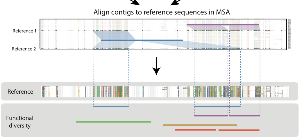 From raw sequencing reads to Gene Centric Analyses PART: 1